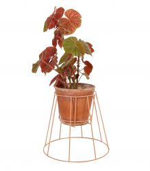 Plant Stand Cibele | Dusty Peach