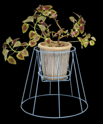 Plant Stand Cibele | Pigeon Blue