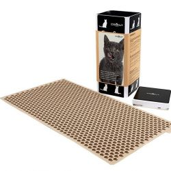 Mold for Dry Cat Kibbles | Cookat
