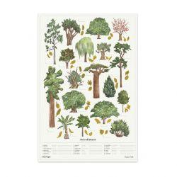 Poster Der Chartologe | Bäume von Interesse