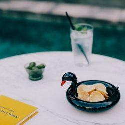 Floatie Pool Pool Servierschüssel | Schwarzer Schwan