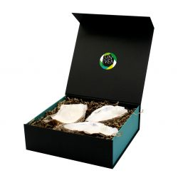 Oyster Candle 3 pcs + Perfumed Pearls Giftbox Large | Natural