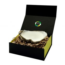 Oyster Candle + Perfumed Pearl Giftbox Small | Natural
