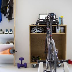 Trainer Cabinet Bike | Oak Veneered