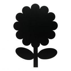 Wandkreide | Blume