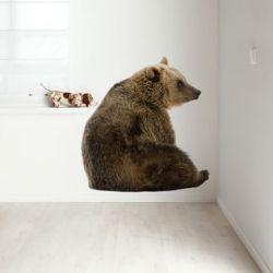 Wandaufkleber Waldfreunde | Bär XL