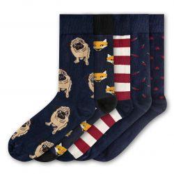 Men Socks FSB285 | Set of 5