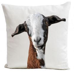 Pillow Cover | Funny Goat