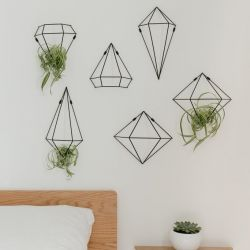 Wall Decoration / Plant Hanger | Black