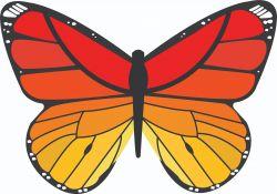 Serviette de Plage | Papillon