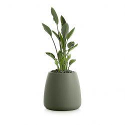 Plantenpot Gobi 1 | Olijfgroen