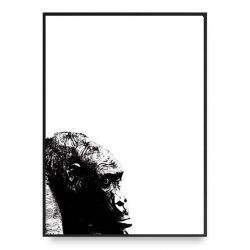 Poster | Gorilla