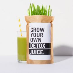 DIY Kit Grow Your Own Detox Juice