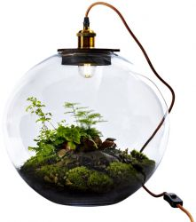 Lampe de Table avec Plante DIY