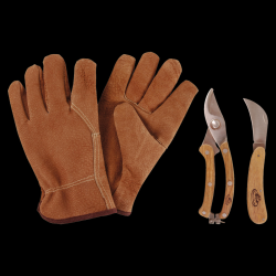 Pruning Set | Small
