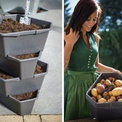 Potato Tower Starter 4 Levels PAUL POTATO | Anthracite