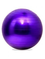 Gym Ball 75 cm | Purple