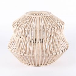 Laternen-Bambus