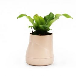 Zelfwaterende Plantenpot Hill L | Crème