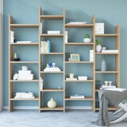 Bookcase Skyler | Wood