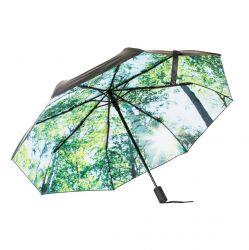 Regenschirm | Wald
