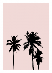 Poster | Pink Palmtrees