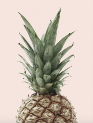 Poster | Pink Pineapple