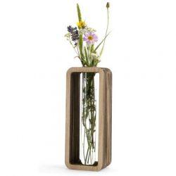 In Vitro Vase
