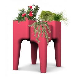 Vegetable Garden Table KIGA | Strawberry M