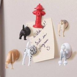 Dog Butt Magnets | Set of 6