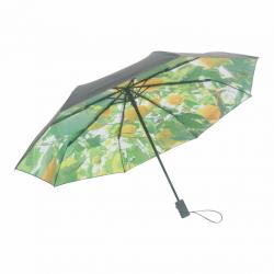 Regenschirm | Zitrone