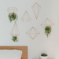 Wall Decoration / Plant Hanger | Copper