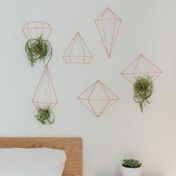 Wanddekoration / Pflanzenaufhänger | Kupfer