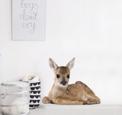Wall Sticker | My Deer Lucy 2