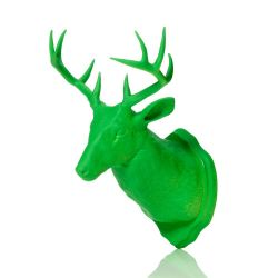 Magnet & Wall Hook Taxidermy | Green