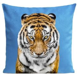 Pillow Cover | Tiger