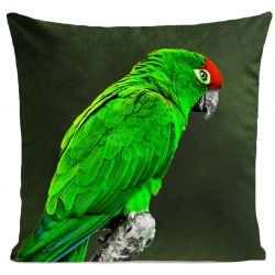 Pillow Cover | Green Parrot