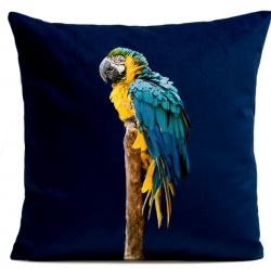 Pillow Cover | Blue Parrot