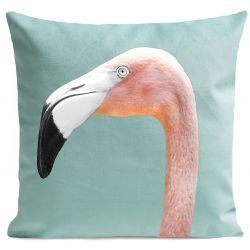 Pillow Cover | Mr. Flamingo
