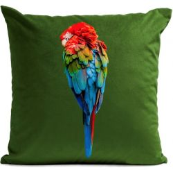 Pillow Cover | Red Parrot