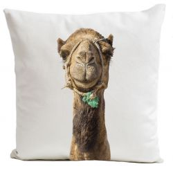 Pillow Cover | Smiling Camel