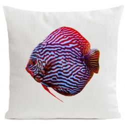 Pillow Cover | Mister Red