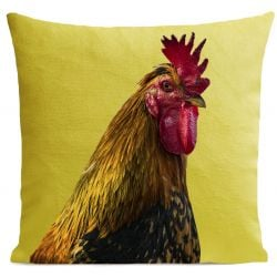 Pillow Cover | Gaulois
