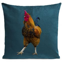 Pillow Cover | French Rooster