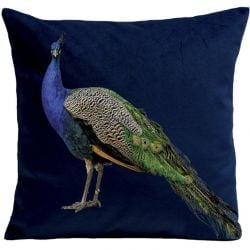 Pillow Cover | Royal Peacock