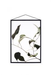 Schwimmende Blätter 09