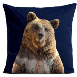 Pillow Cover | Mr. Bear