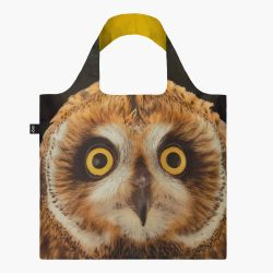 Bag National Geographic | Short-eared Owl