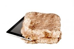 Fur Pocket Ipad