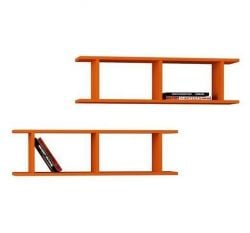 Shelf Ray Set of 2 | Orange